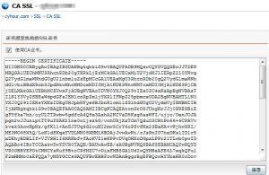 复制其字符串到CA证书链