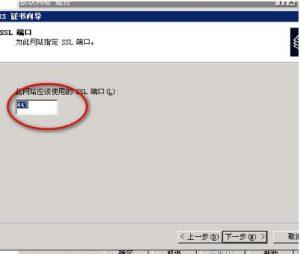 输入SSL访问端口 443