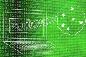 网站为什么需要SSL证书?