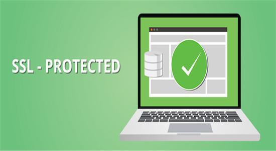 SSL证书企业版