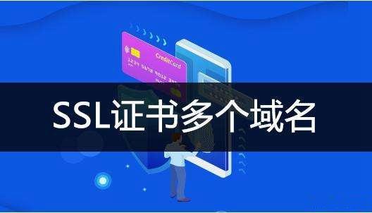 一个SSL证书服务多域名